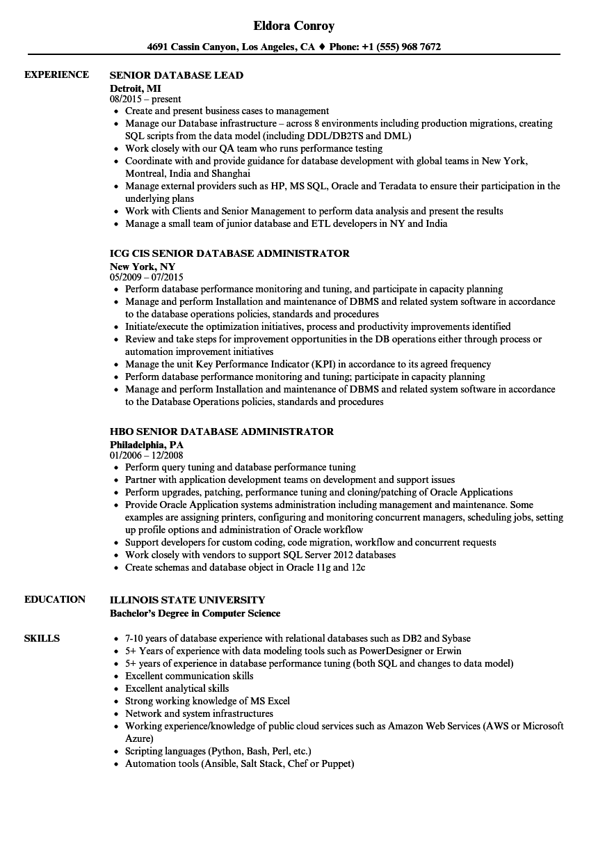 Modern Senior Database Engineer Resume Image Documentation