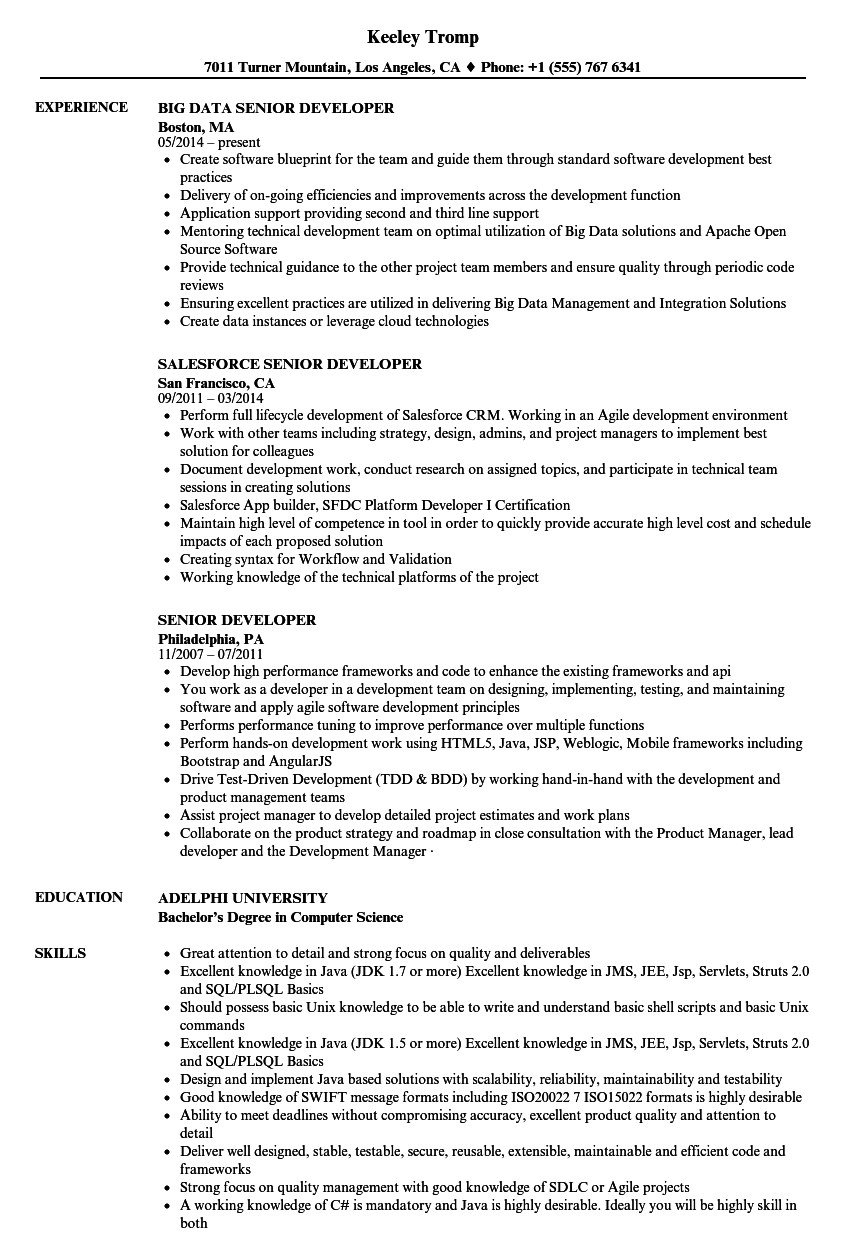 Senior Developer Resume Samples