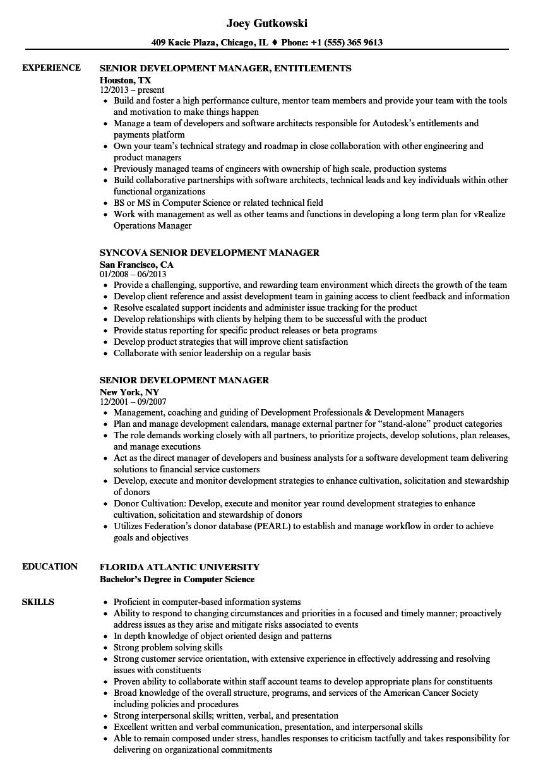 senior development manager resume samples