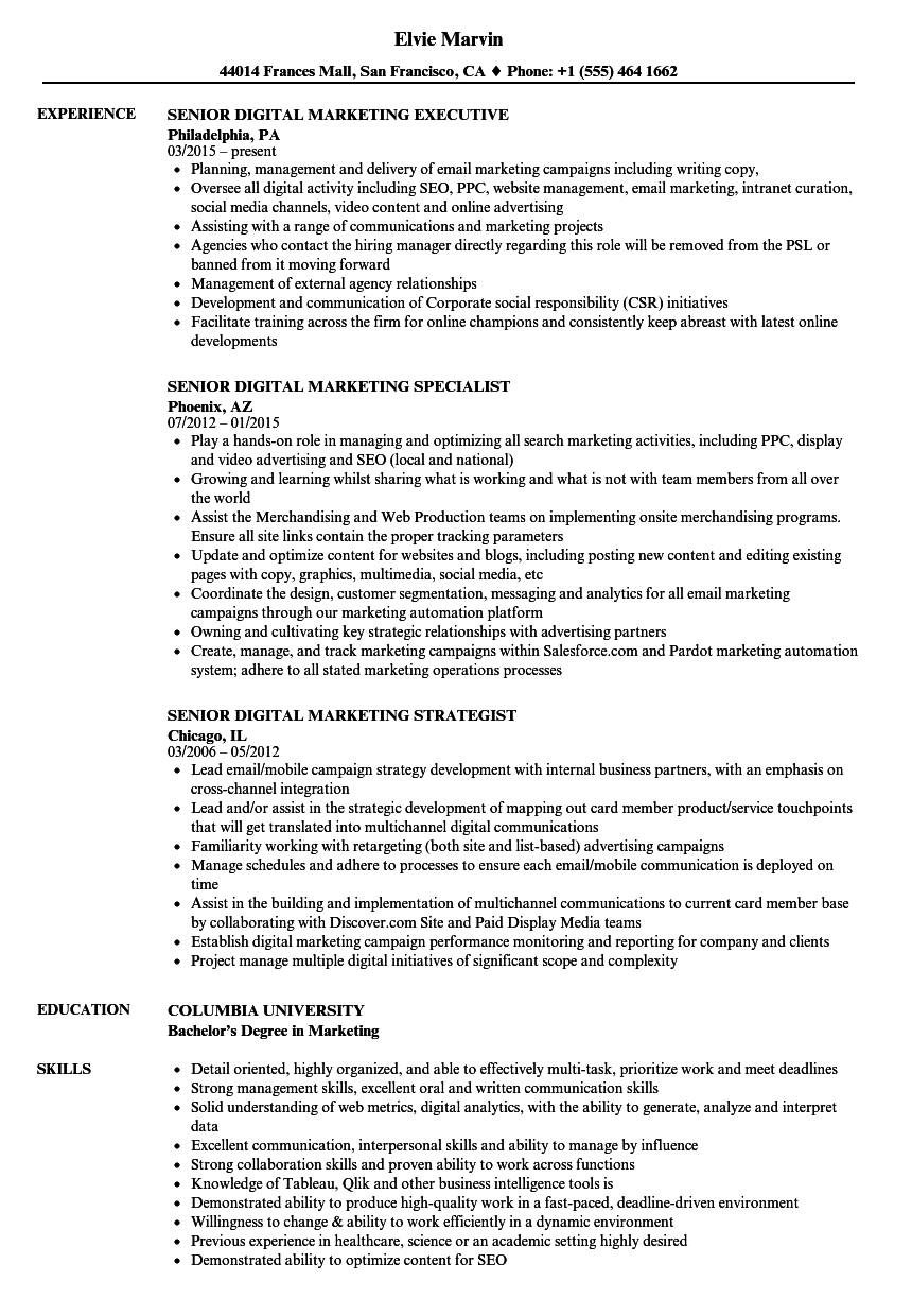 senior digital marketing resume samples