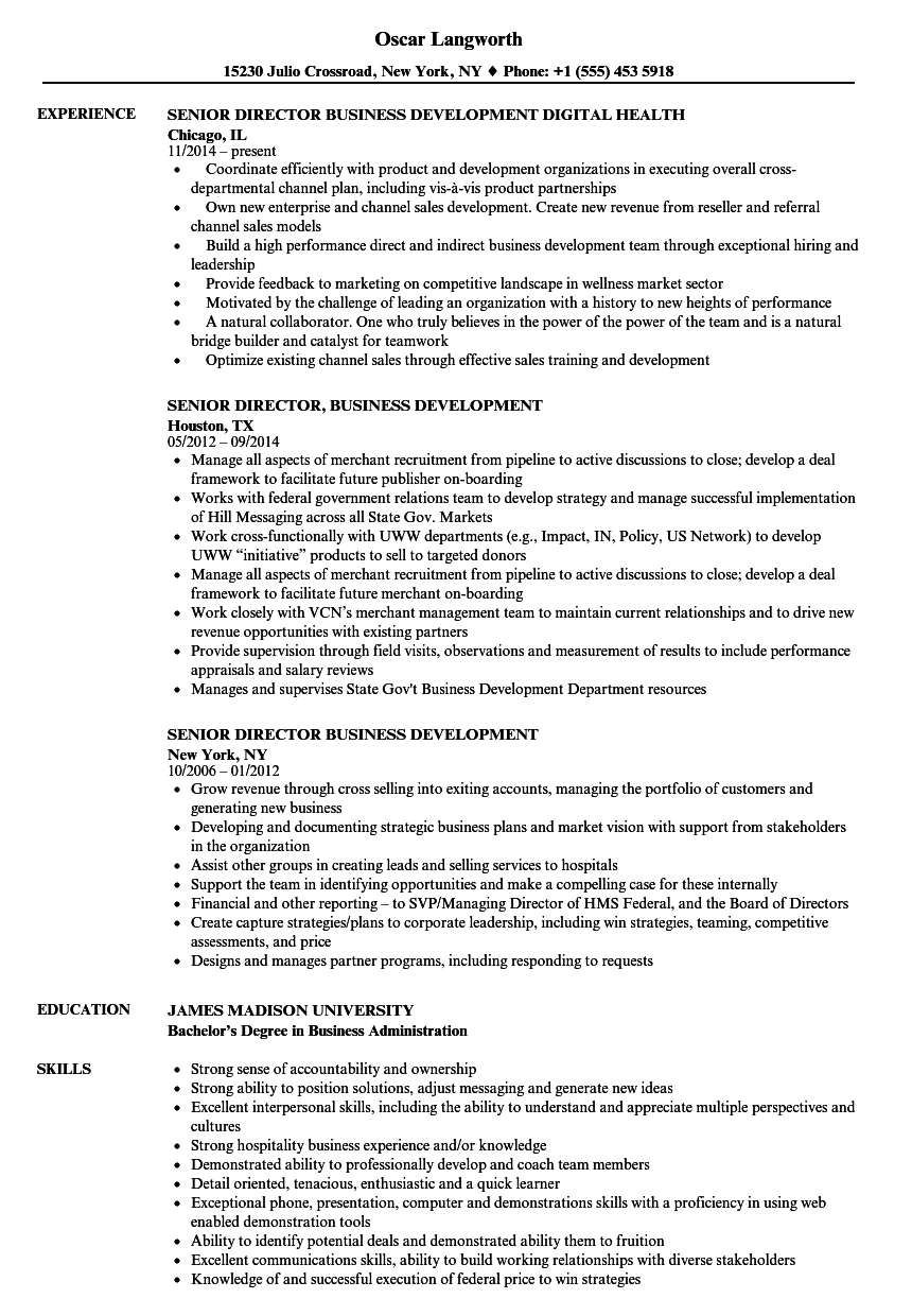 senior director  business development resume samples