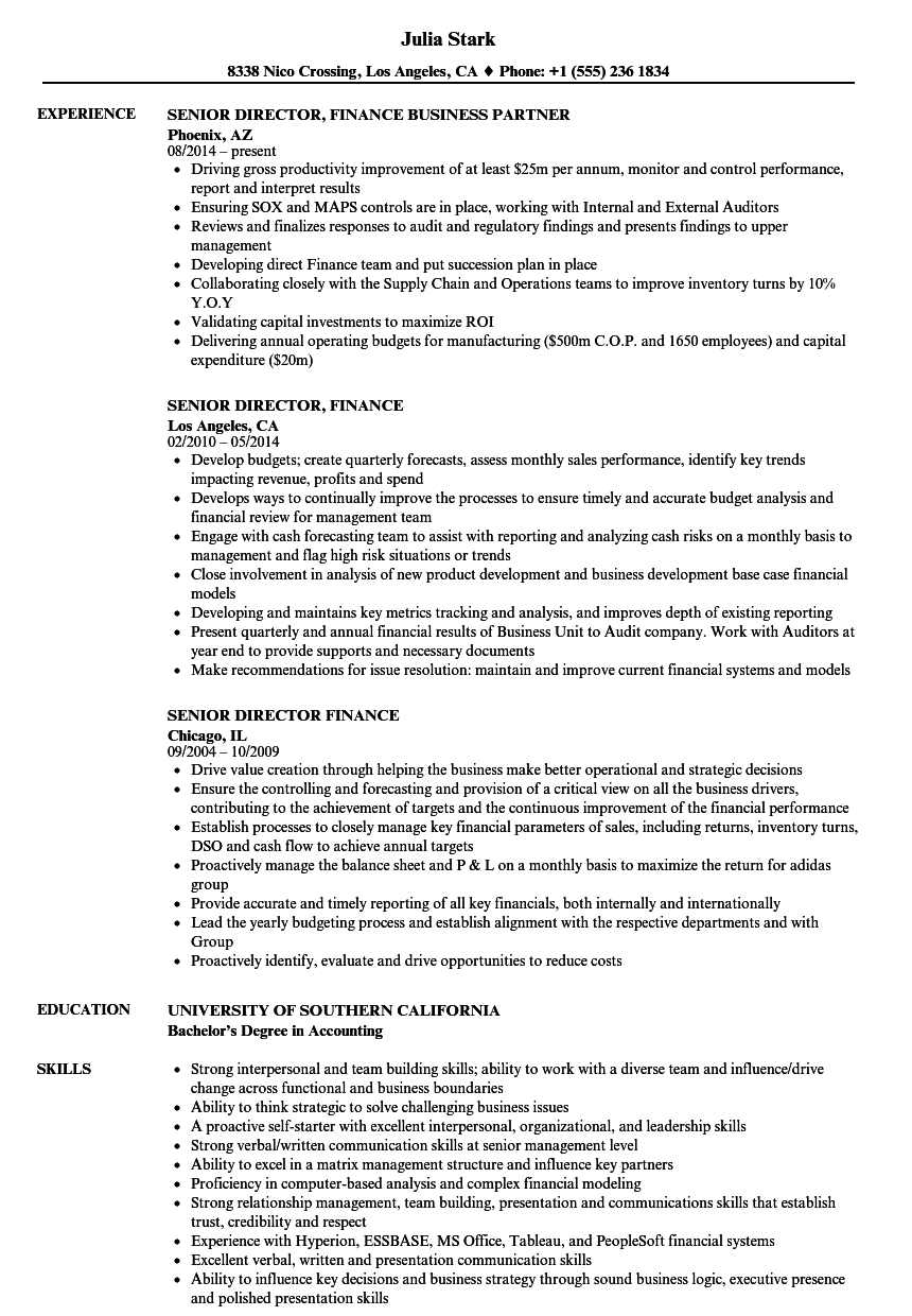 senior director  finance resume samples