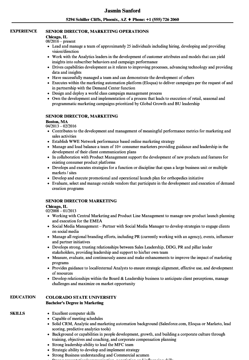 Senior Director, Marketing Resume Samples | Velvet Jobs