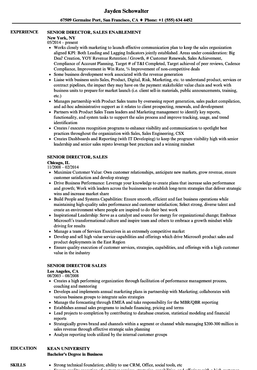 Download Senior Director, Sales Resume Sample As Image File