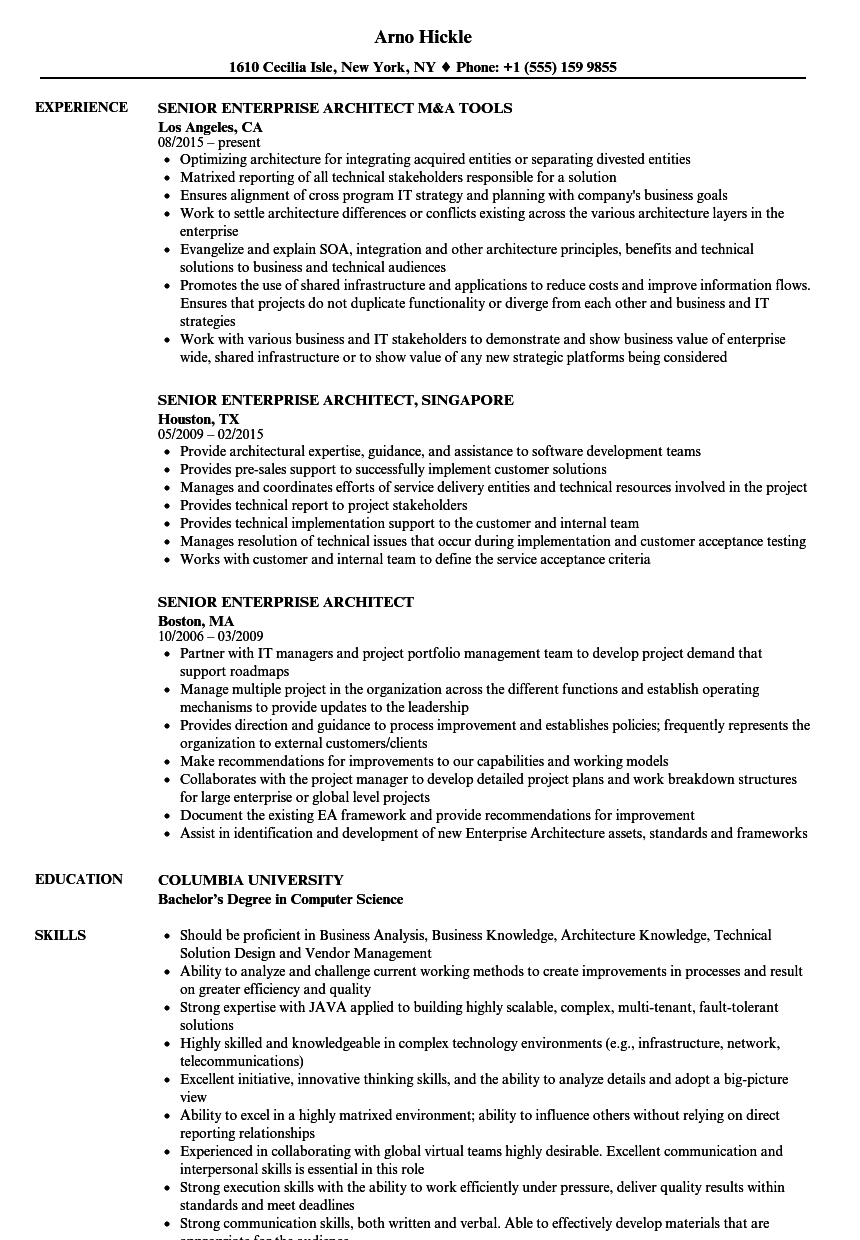 senior enterprise architect resume samples