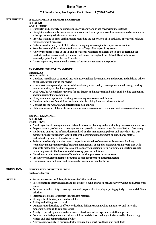 senior examiner resume samples