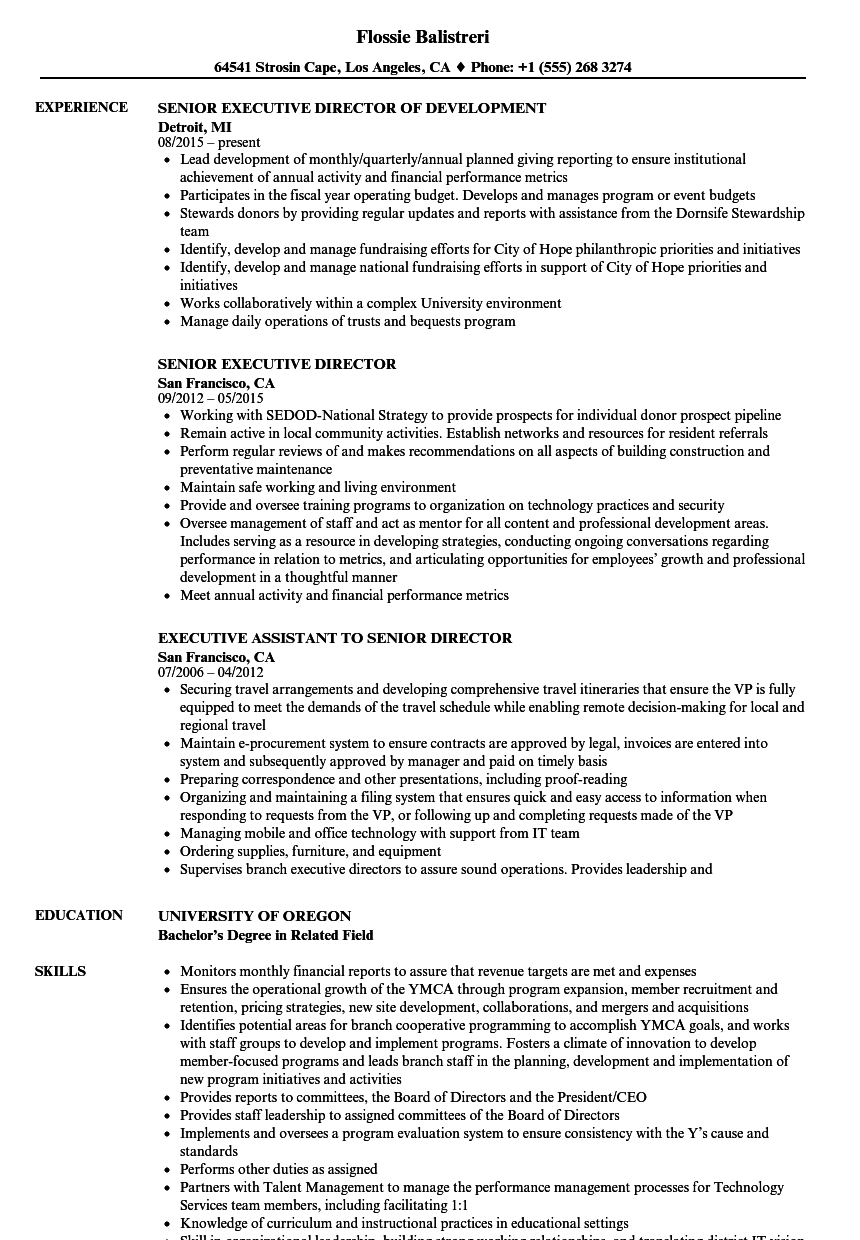 Senior Executive Director Resume Samples | Velvet Jobs