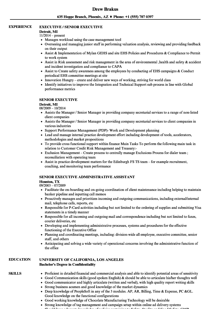 Senior Executive Resume Samples | Velvet Jobs