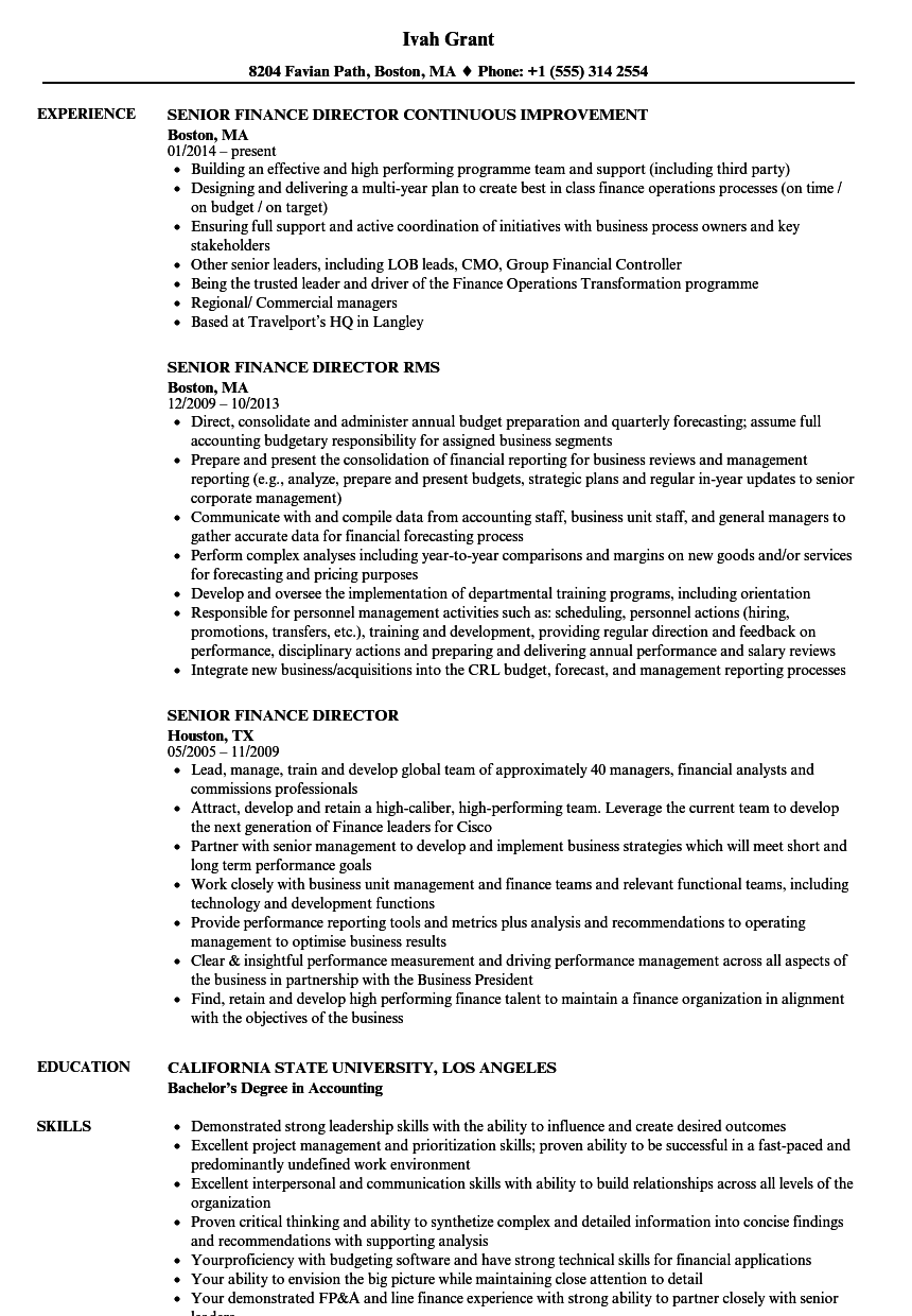 Senior Finance Director Resume Samples Velvet Jobs