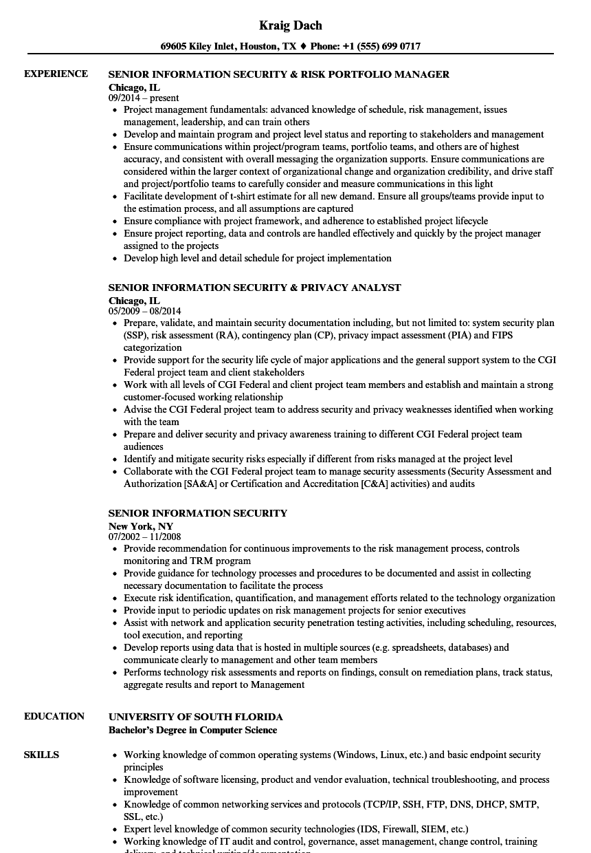 download senior information security resume sample as image file - Information Security Resume