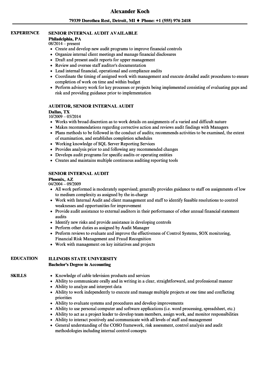 senior  internal audit resume samples