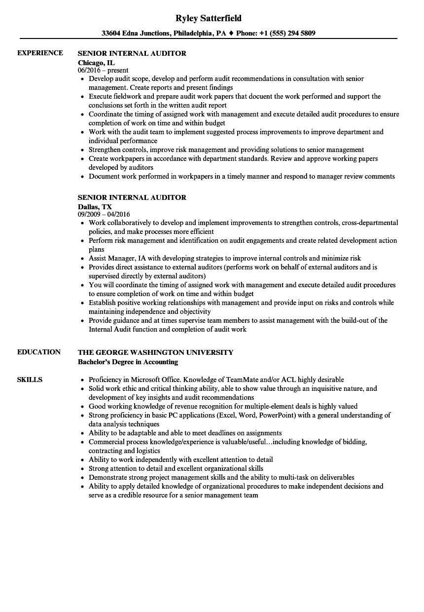 Senior Internal Auditor Resume Samples | Velvet Jobs