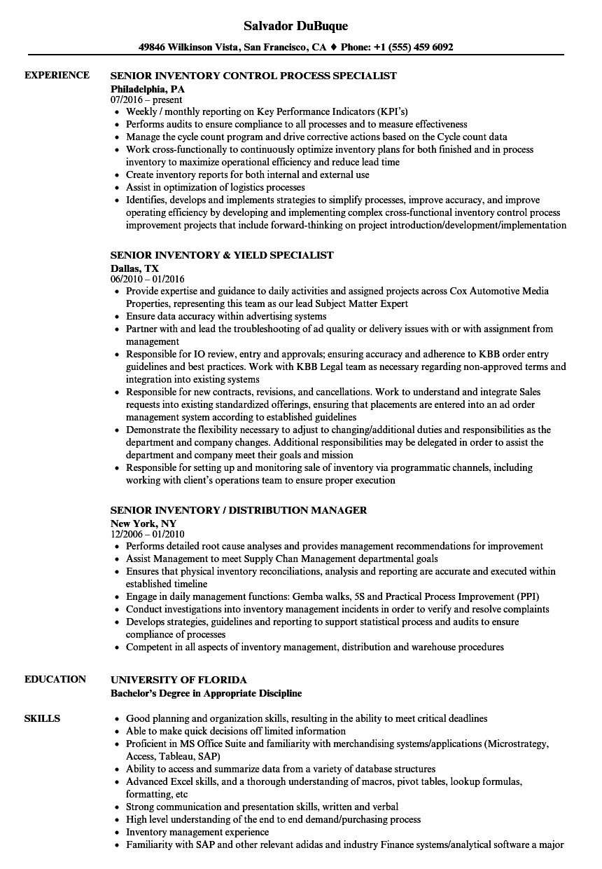senior inventory resume samples