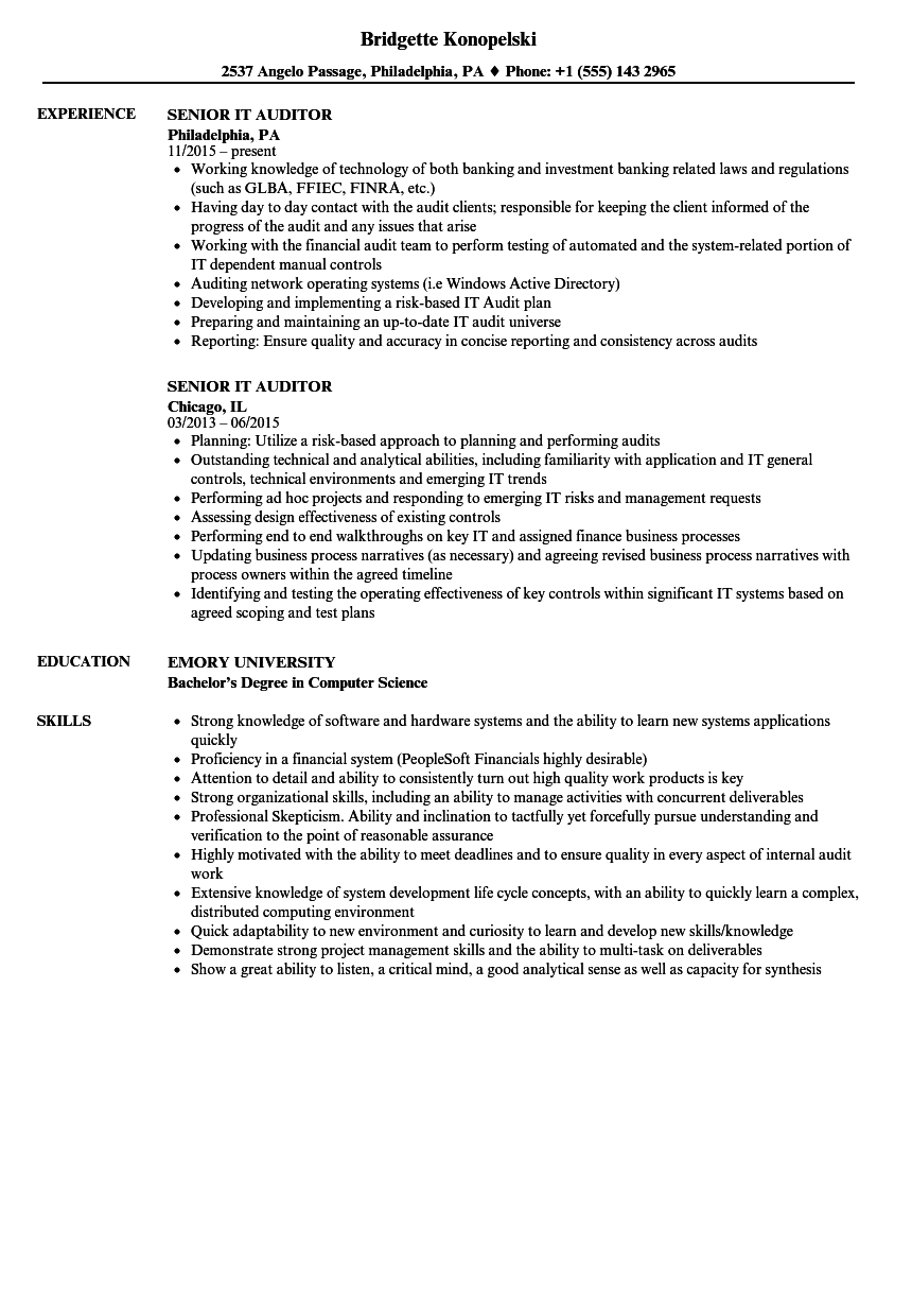 Senior IT Auditor Resume Samples | Velvet Jobs