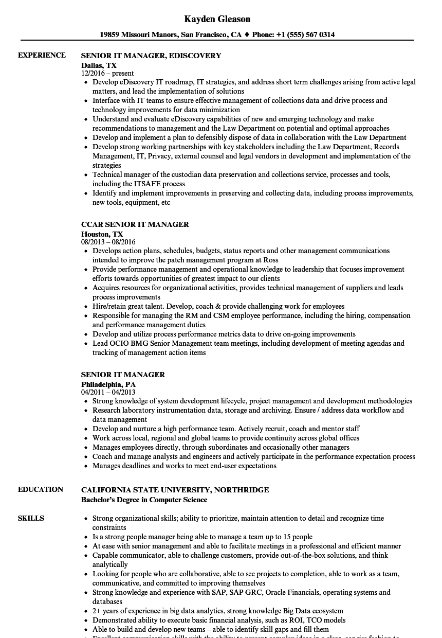 Senior It Manager Resume Samples Velvet Jobs