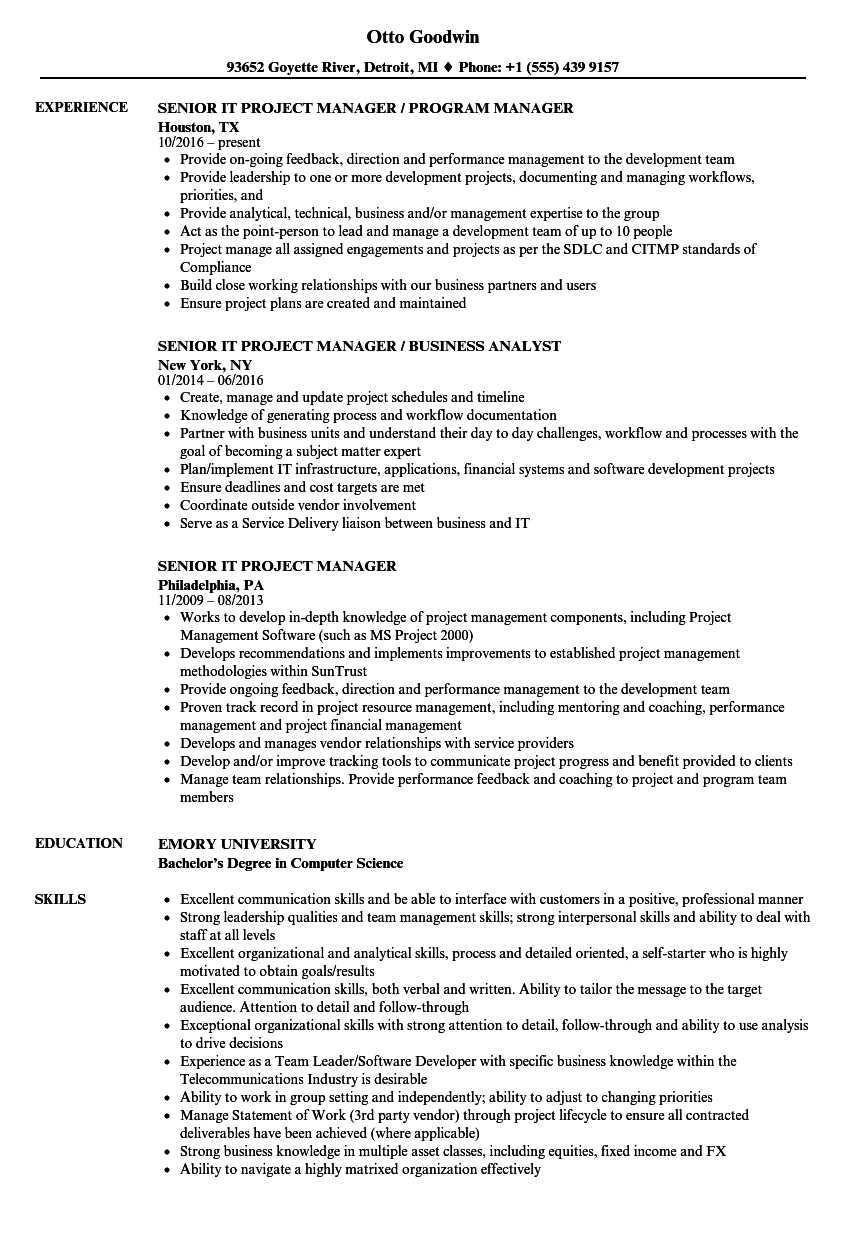 Senior IT Project Manager Resume Samples | Velvet Jobs