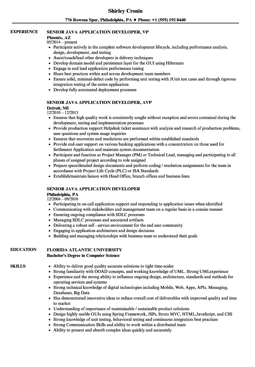Senior Java Application Developer Resume Samples | Velvet Jobs
