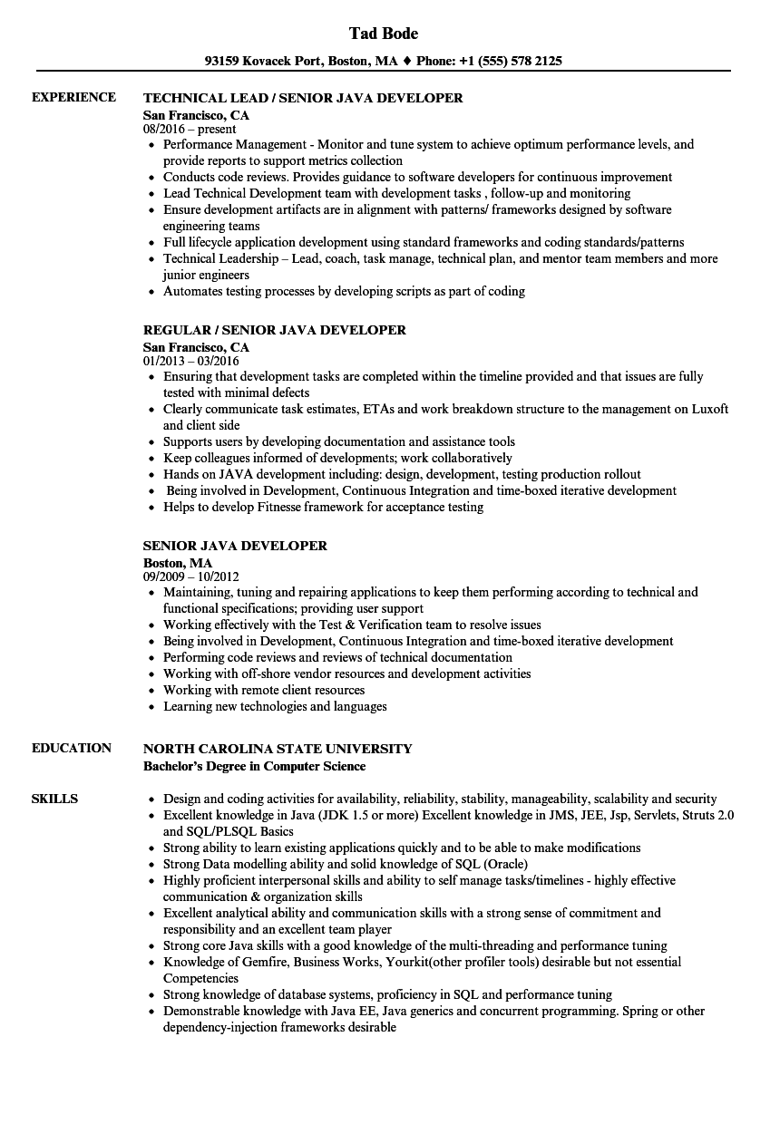 Senior Java Developer Resume Samples | Velvet Jobs