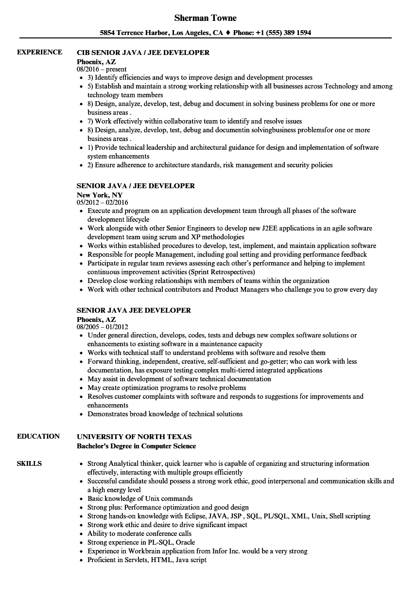 Senior Java / JEE Developer Resume Samples | Velvet Jobs