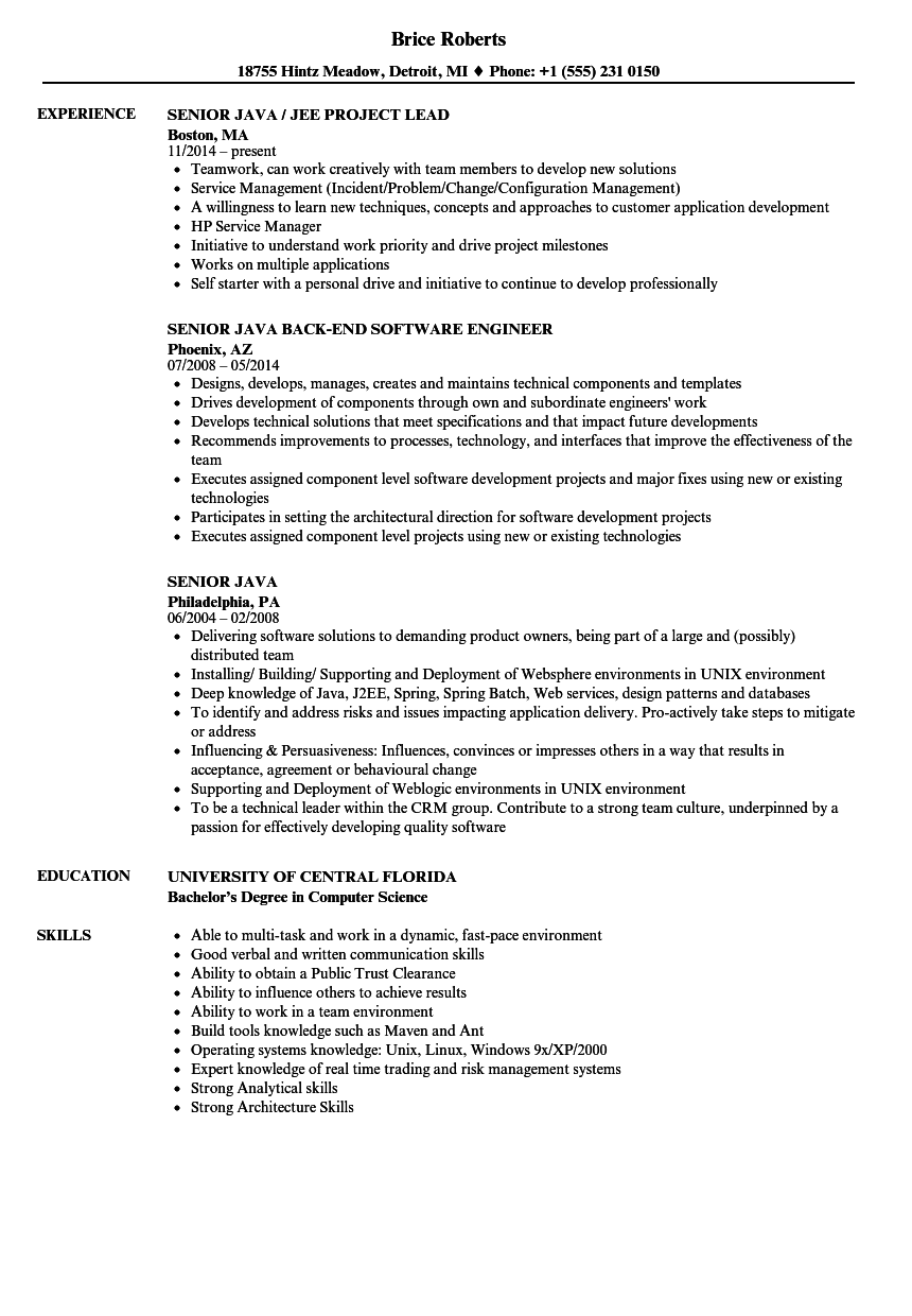 Senior Java Resume Samples | Velvet Jobs