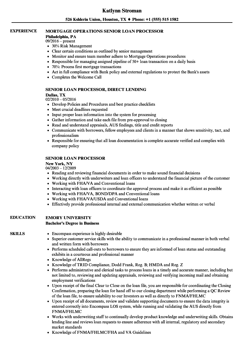 senior loan processor resume samples