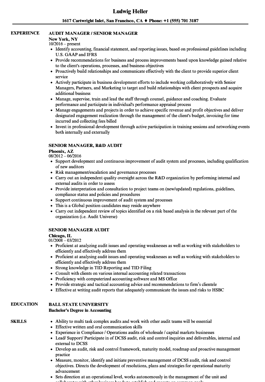 Senior Manager Audit Resume Samples | Velvet Jobs