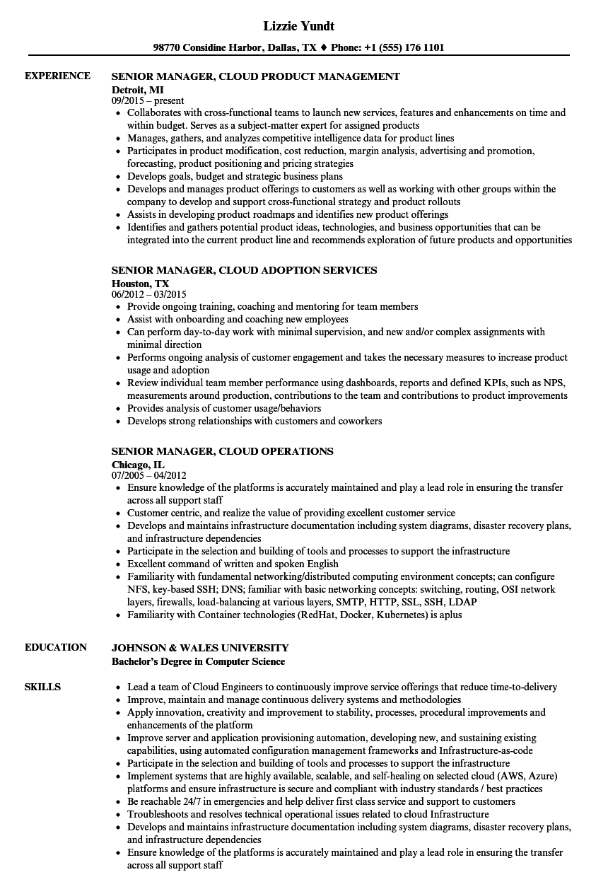 resume Resume Capability unusual no resume capability idm photos example templates cool pictures inspiration entry level