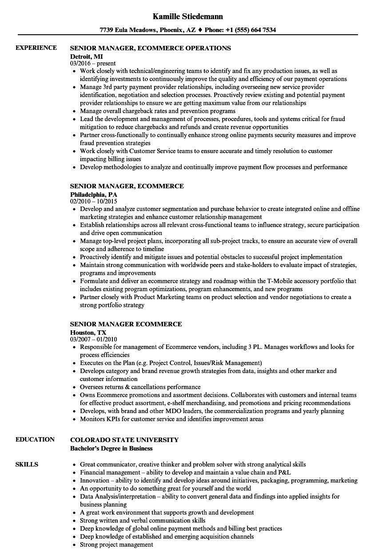 senior manager  ecommerce resume samples