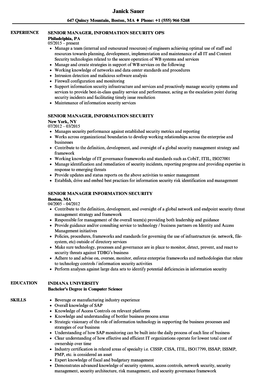 senior manager  information security resume samples