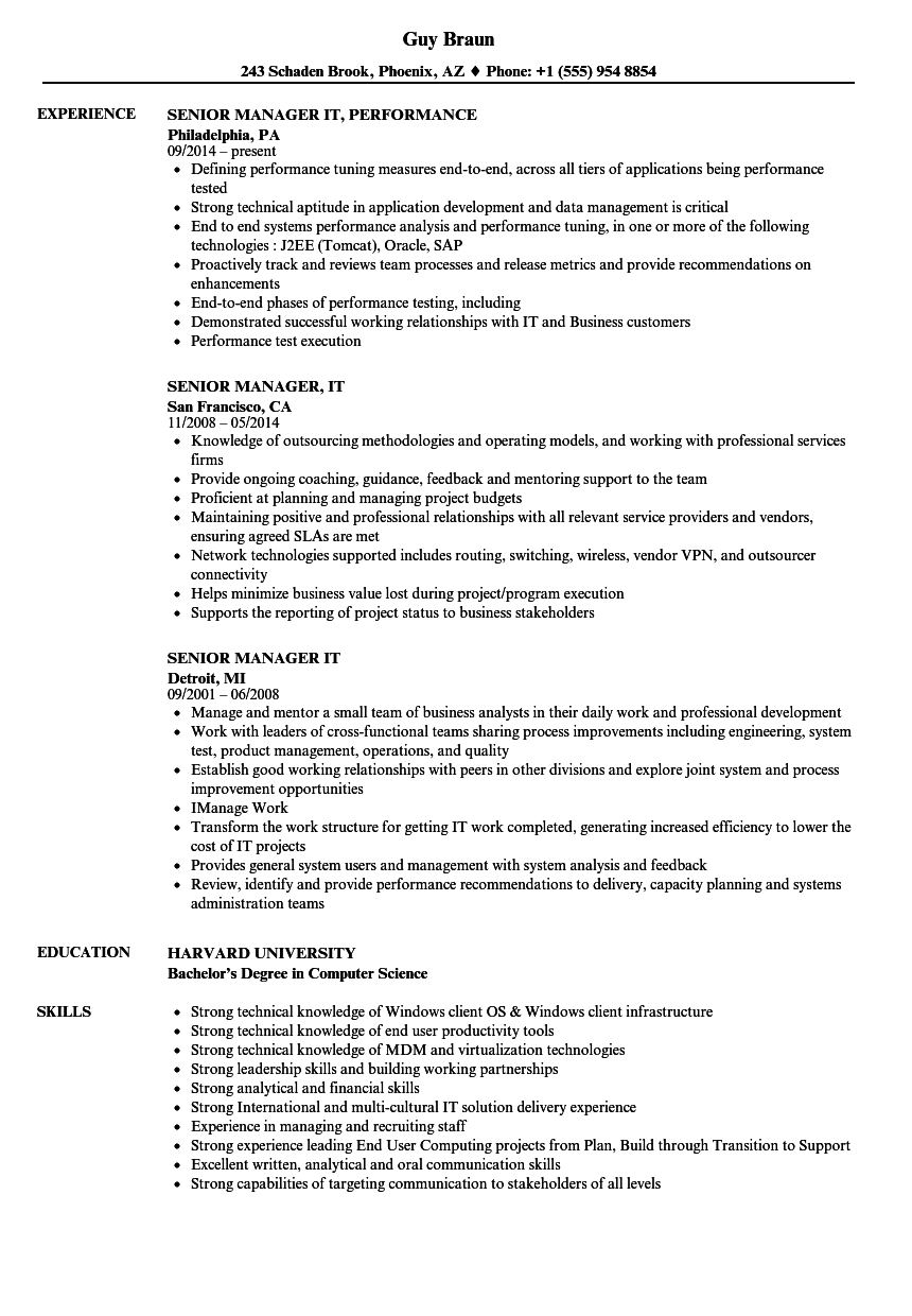 Senior Manager  IT Resume Samples