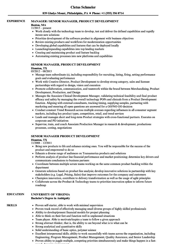 senior manager  product development resume samples