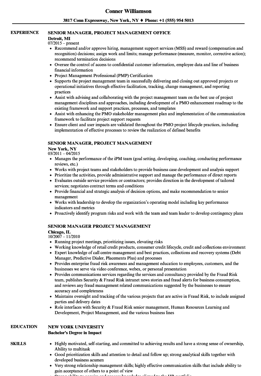 senior manager  project management resume samples