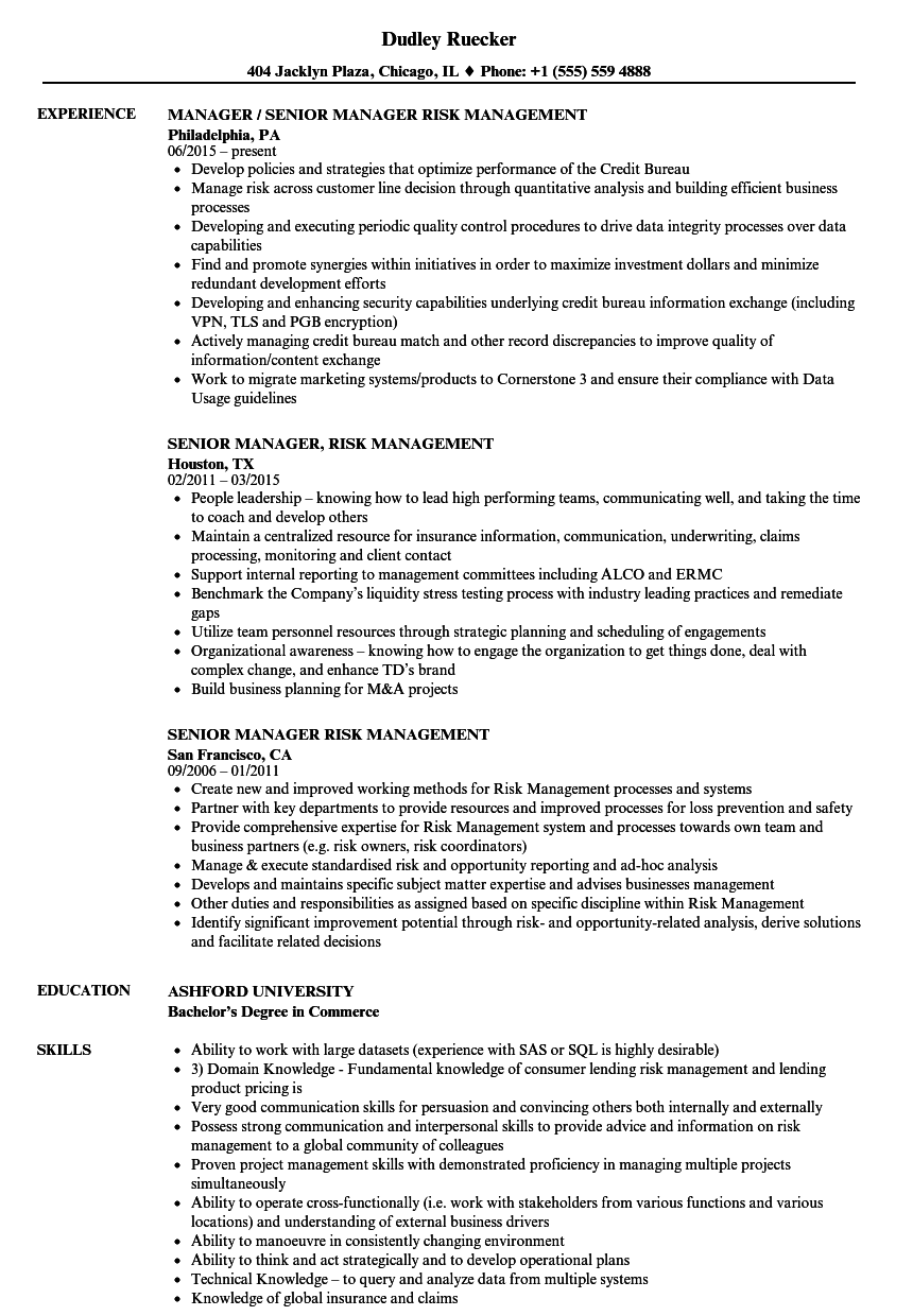 senior manager risk management resume samples