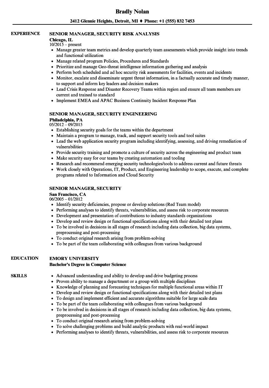 senior manager  security resume samples
