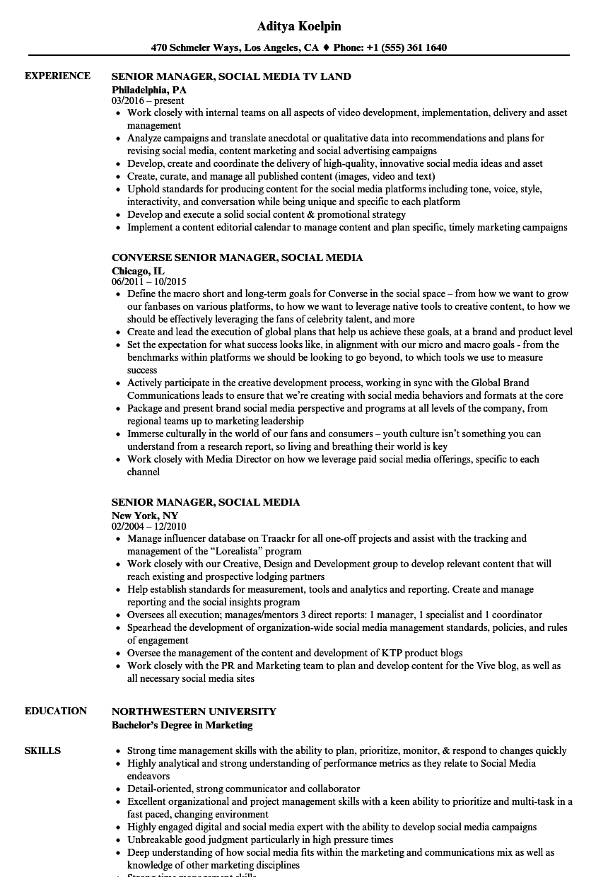 senior manager  social media resume samples
