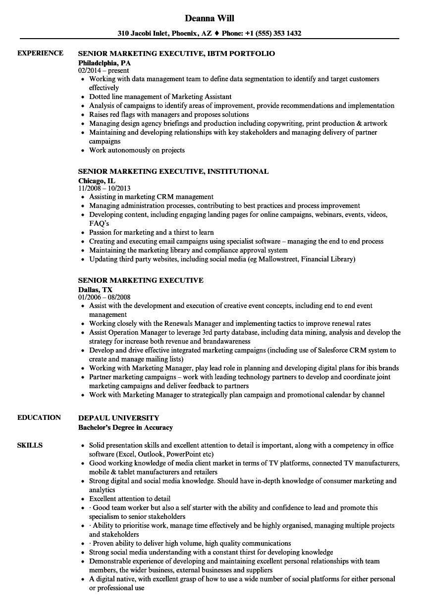 Senior Marketing Executive Resume Samples | Velvet Jobs