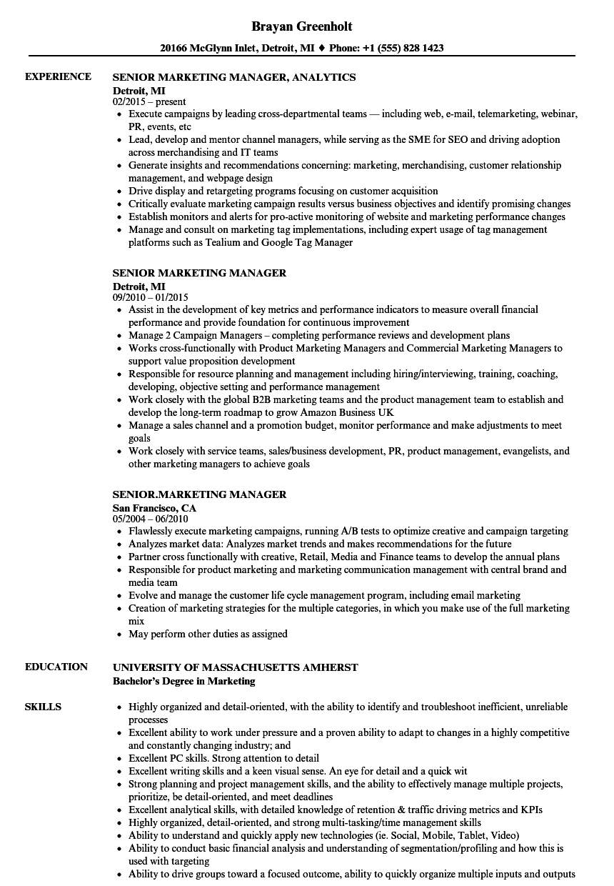 Senior Marketing Manager Resume Samples | Velvet Jobs