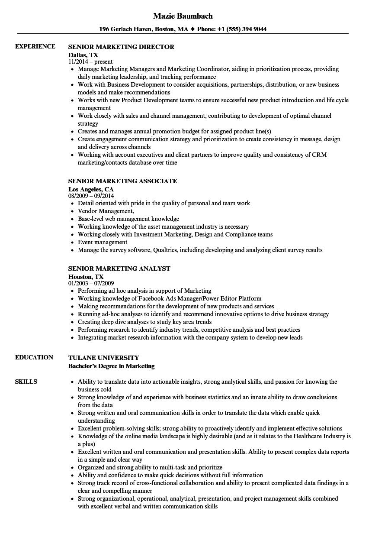Senior marketing resume samples velvet jobs download senior marketing resume sample as image file fandeluxe Choice Image