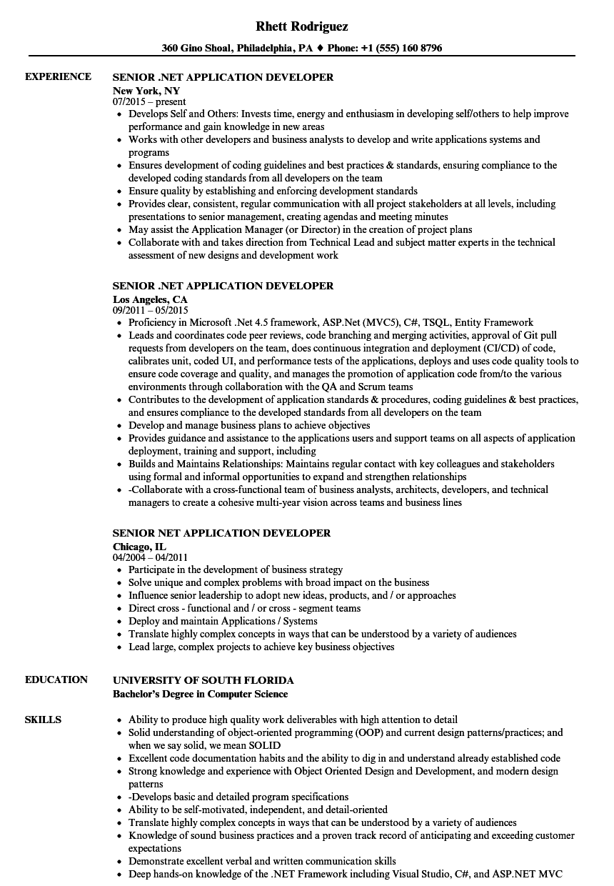Senior NET Application Developer Resume Samples