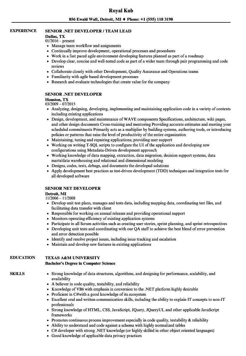 Senior .NET Developer Resume Samples | Velvet Jobs