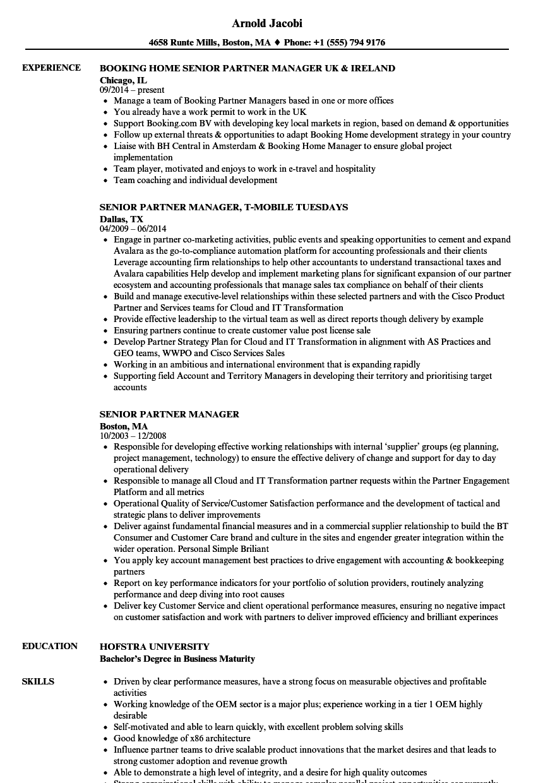 Senior Partner Manager Resume Samples | Velvet Jobs