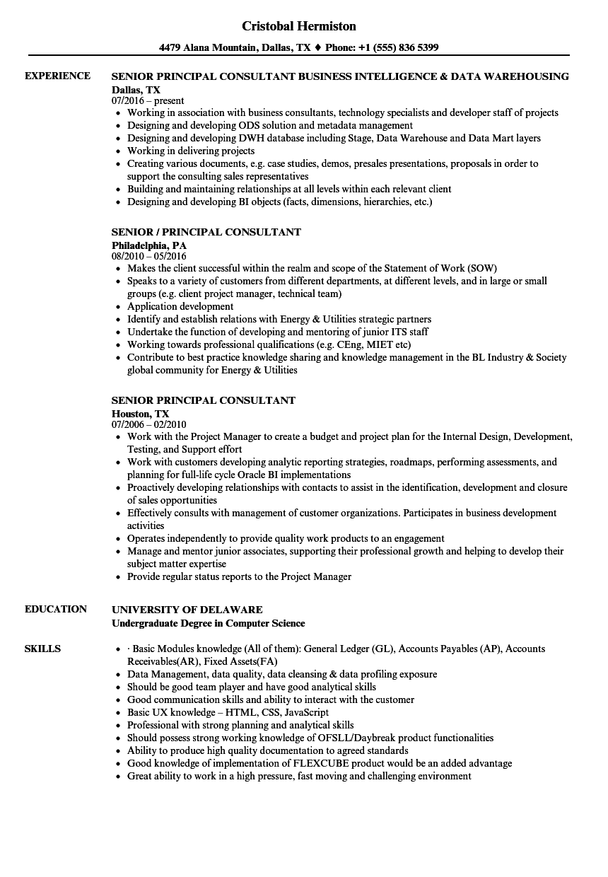 senior principal consultant resume samples