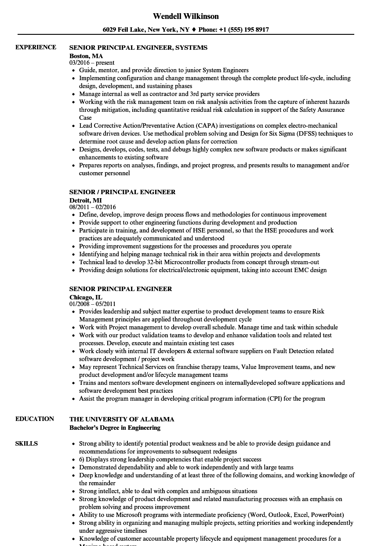 senior principal engineer resume samples