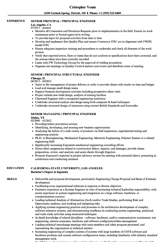 senior principal    principal engineer resume samples