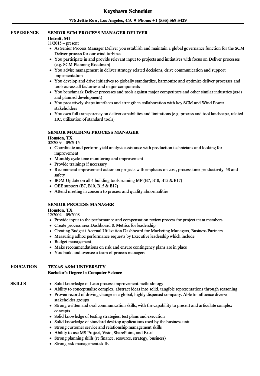senior process manager resume samples