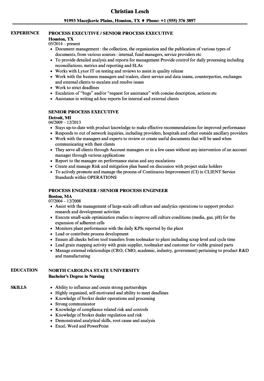 Senior Process Resume Samples | Velvet Jobs