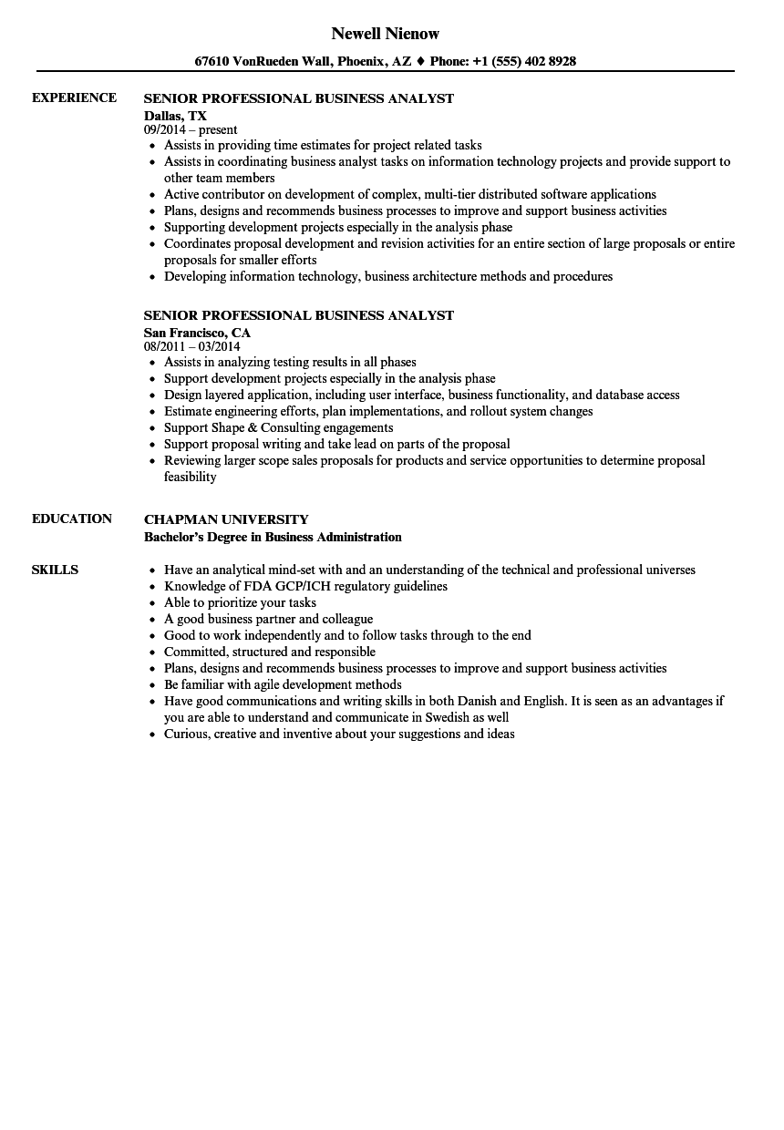 download senior professional business analyst resume sample as image file