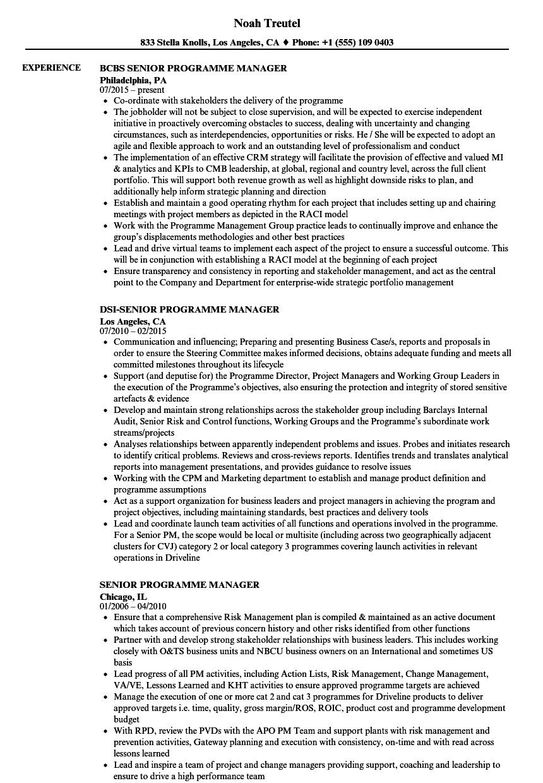 Senior Programme Manager Resume Samples Velvet Jobs