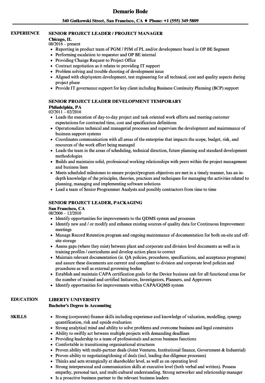 Senior Project Leader Resume Samples Velvet Jobs