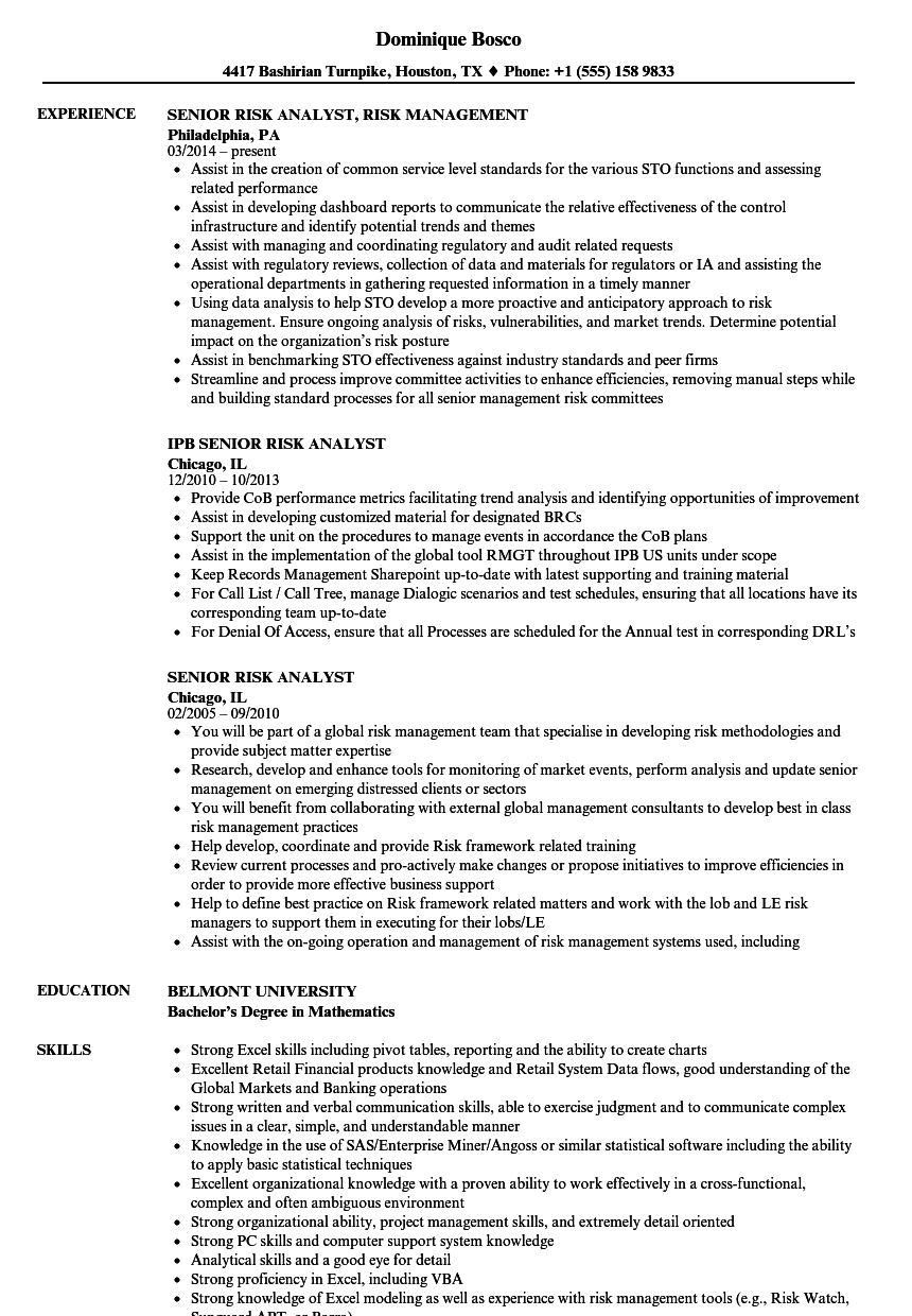 senior risk analyst resume samples
